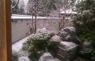 garden1_0